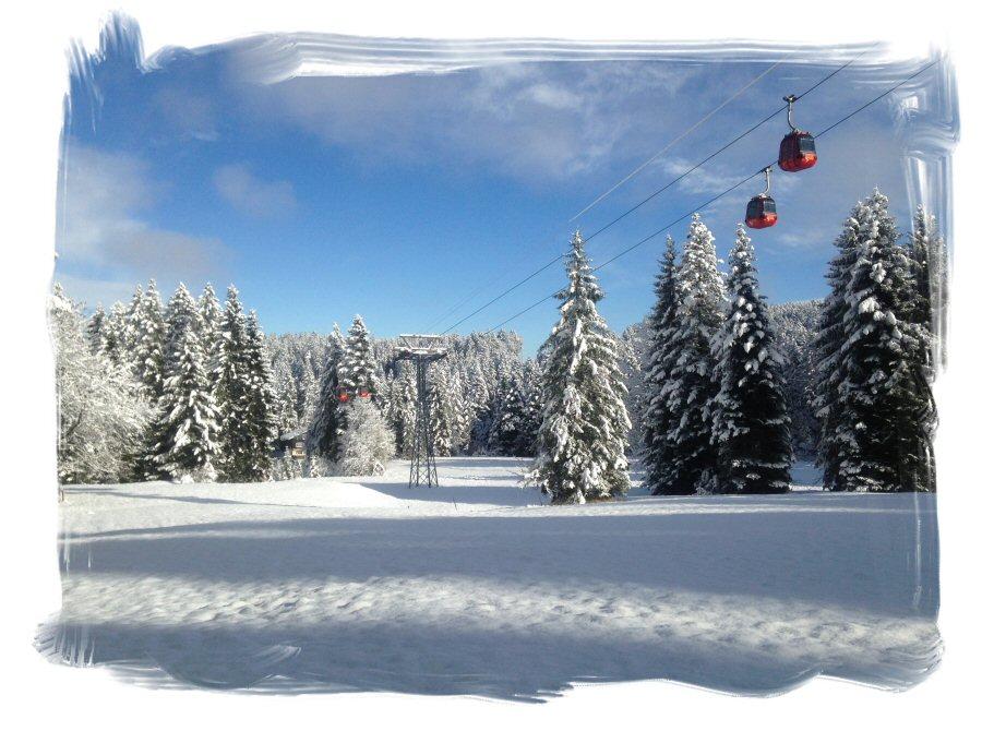 titelbild_winter